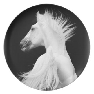 Placa del caballo blanco (semental de Kladruber) Platos