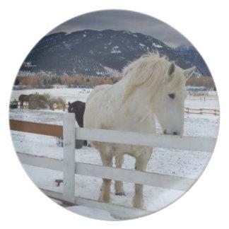Placa del caballo plato de comida