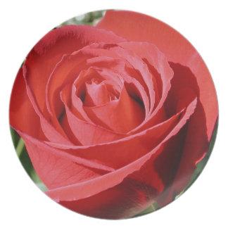 Placa del cierre del rosa rojo plato de comida