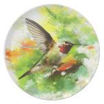 Placa del colibrí del Broadtail Plato De Comida