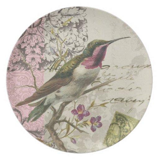 Placa del colibrí del vintage… plato de cena