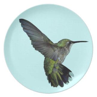 Placa del colibrí platos para fiestas