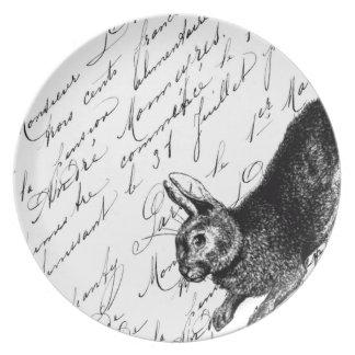 Placa del conejito plato para fiesta
