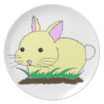 Placa del conejo de conejito del bebé:) plato para fiesta