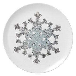 Placa del copo de nieve platos