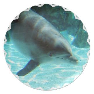 Placa del delfín común plato para fiesta