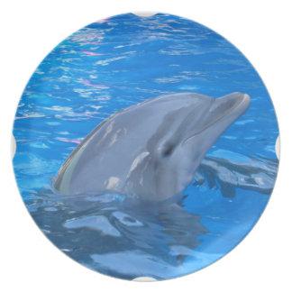 Placa del delfín de Bottlenose Platos Para Fiestas
