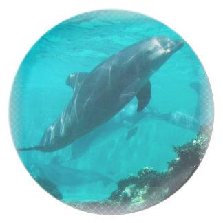 Placa del delfín de la natación platos de comidas