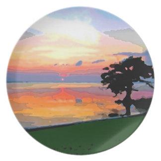 Placa del derramamiento de Sun Plato Para Fiesta