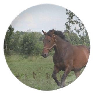 Placa del diseño del caballo de bahía platos