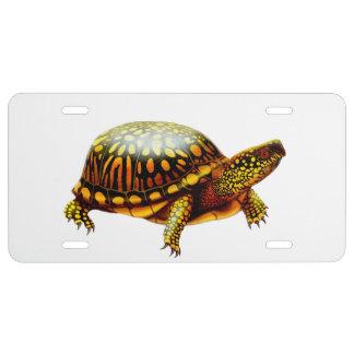 Placa del este amistosa de la tortuga de caja placa de matrícula