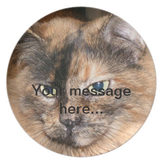 Placa del gato de Torti Platos