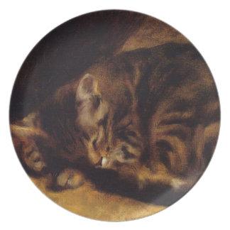Placa del gato el dormir de Renoir Plato