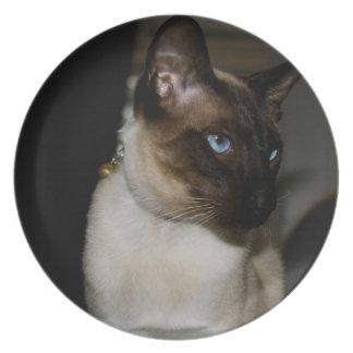 Placa del gato siamés platos para fiestas