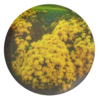 placa del jardín de flores plato para fiesta