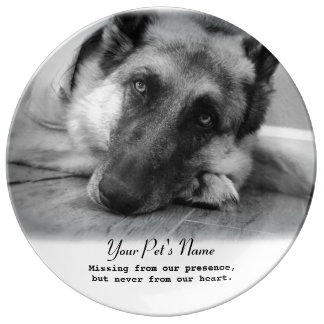 Placa del monumento de la pérdida del mascota del plato de cerámica