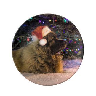 Placa del navidad de Leonberger Plato De Cerámica