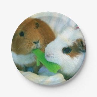 placa del navidad del conejillo de Indias Platos De Papel