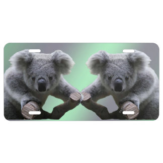 Placa del oso de koala placa de matrícula
