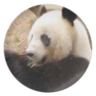 Placa del oso de panda platos de comidas