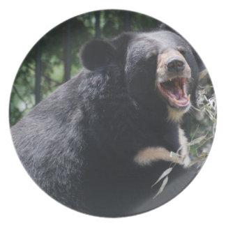 Placa del oso el gruñir platos de comidas