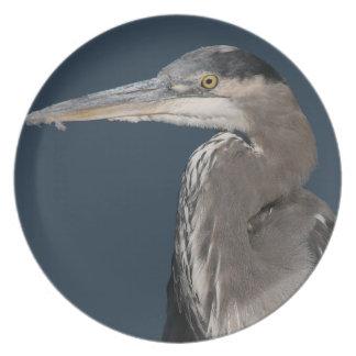 Placa del pájaro de la garza platos de comidas