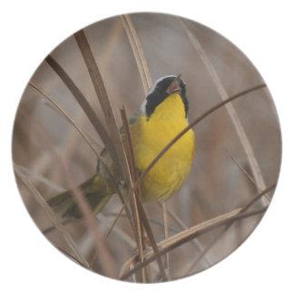 Placa del pájaro del Yellowthroat Platos