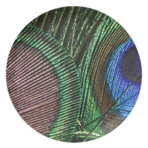 Placa del pavo real plato de comida
