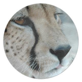 Placa del perfil del guepardo plato de comida