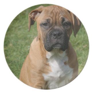 Placa del perrito del boxeador plato de cena