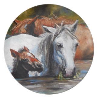 Placa del potro del río Salt Plato Para Fiesta