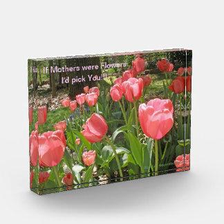 Placa del regalo para el bloque de acrílico de la