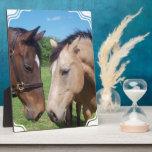 Placa del romance del caballo