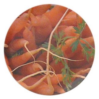 Placa del Veggie de la zanahoria Platos De Comidas