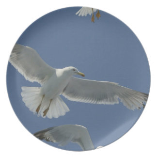 Placa del vuelo de la gaviota plato de cena