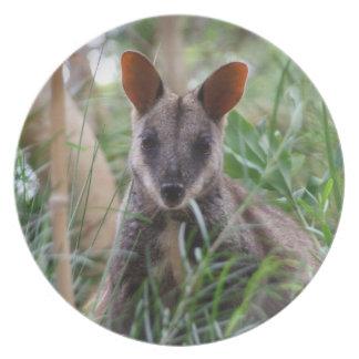 Placa del Wallaby de roca Platos De Comidas