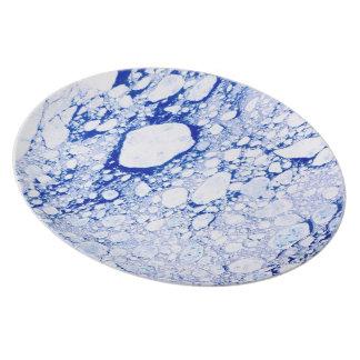 Placa desapasible de la caja fuerte del lavaplatos plato para fiesta
