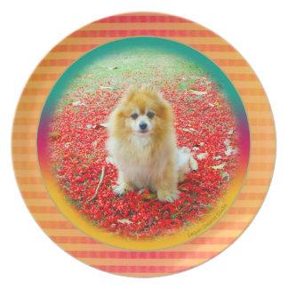 Placa el   Pomeranian con las flores rojas Plato De Cena
