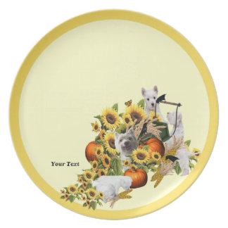 Placa espléndida de la melamina de la cosecha de l plato para fiesta