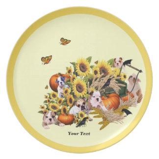 Placa espléndida de la melamina de la cosecha de l plato