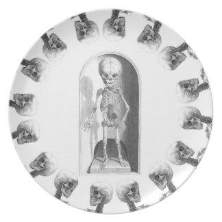 Placa esquelética del muchacho platos para fiestas