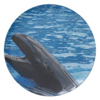 Placa falsa de la orca plato