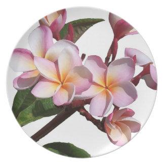 Placa floral de la isla de la flor tropical del plato para fiesta