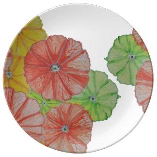 Placa floral de la porcelana de la rebanada de la plato de cerámica
