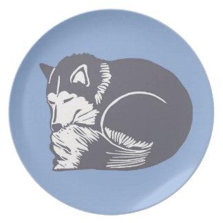 Placa fornida de los azules claros el dormir plato para fiesta