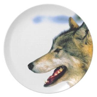 Placa fotográfica del lobo hermoso platos