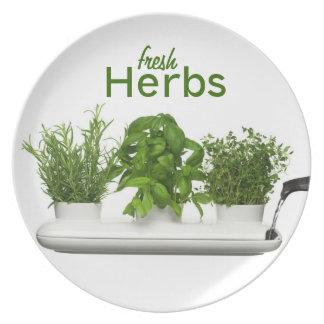 Placa fresca de las hierbas plato de comida