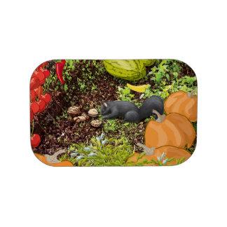 Placa frontal de la caja del almuerzo de Emmaline