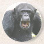 Placa habladora del chimpancé posavaso para bebida