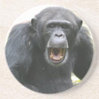 Placa habladora del chimpancé posavasos personalizados